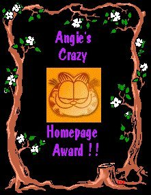 Angie's Crazy Homepage Award